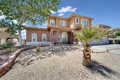 El Paso Single Family Home For Sale: 6381 Franklin Trail Drive
