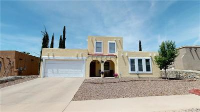 El Paso Single Family Home For Sale: 5529 Beth View Drive