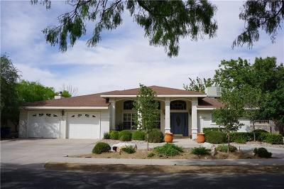 El Paso Single Family Home For Sale: 649 Rosinante Road