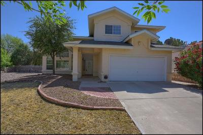 El Paso Single Family Home For Sale: 1120 Canyon Run Drive