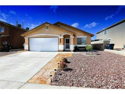 El Paso Single Family Home For Sale: 7029 Falling Leaf Circle