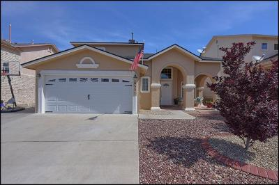 El Paso Single Family Home For Sale: 6337 Cougar Ridge