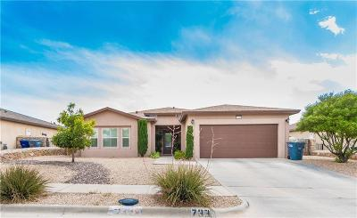 Single Family Home For Sale: 7338 Black Mesa Drive