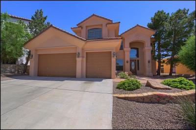 El Paso Single Family Home For Sale: 6340 Franklin Summit Drive