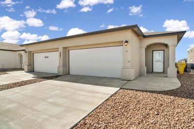 Multi Family Home For Sale: 3441 Dana Grey Drive #H