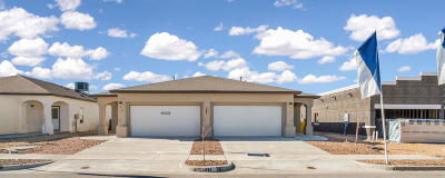 Multi Family Home For Sale: 3429 Dana Grey #G