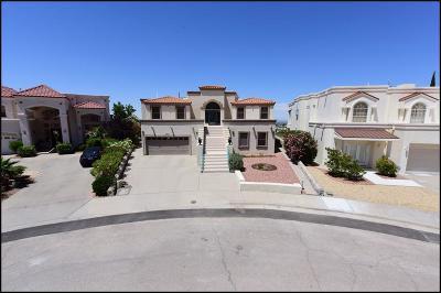 El Paso Single Family Home For Sale: 5801 Diamond Point Circle