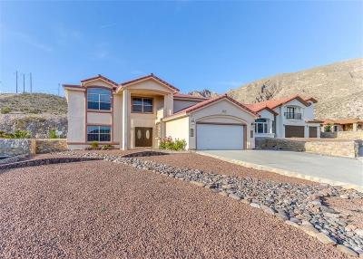 El Paso Single Family Home For Sale: 317 Zenith Drive