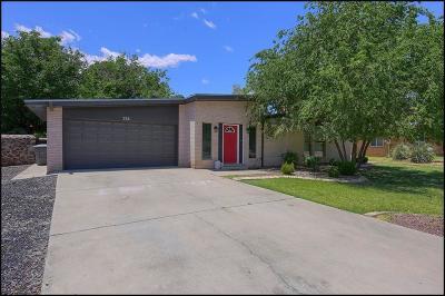 El Paso Single Family Home For Sale: 336 Serrania Drive