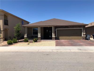 Single Family Home For Sale: 12609 Paseo Rae Avenue