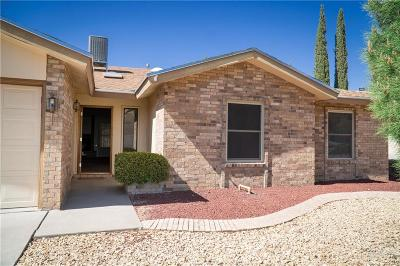 El Paso Single Family Home For Sale: 6421 Loma De Cristo Drive