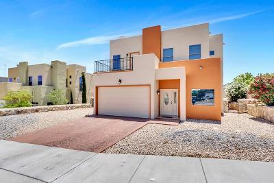 El Paso Single Family Home For Sale: 4114 Skyline Avenue