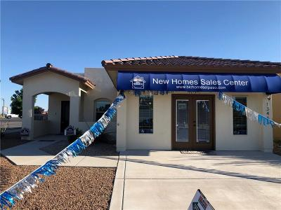 El Paso Single Family Home For Sale: 13466 Halifax