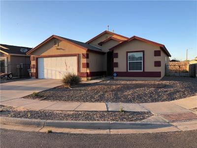 Single Family Home For Sale: 7025 Torrey Drive