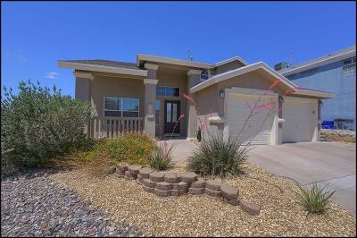 El Paso Single Family Home For Sale: 6417 Franklin Ridge Drive