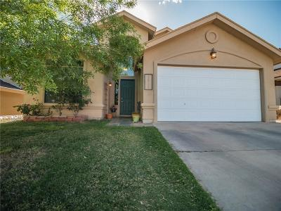 Single Family Home For Sale: 1513 Snowy Plover