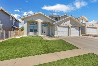 Single Family Home For Sale: 1413 Stone Pointe