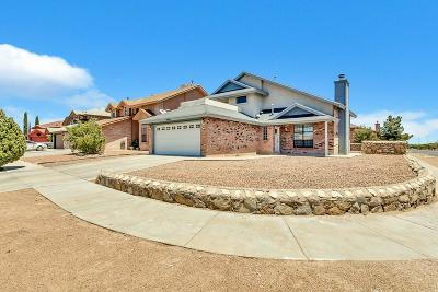 El Paso Single Family Home For Sale: 3000 Gull Lake Place
