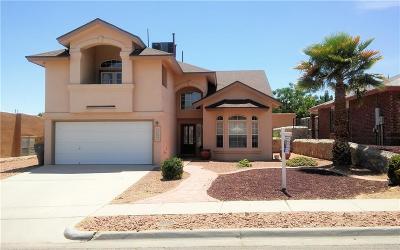 Single Family Home For Sale: 12524 Sun Terrace Avenue