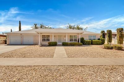 El Paso Single Family Home For Sale: 6329 Monarch Drive