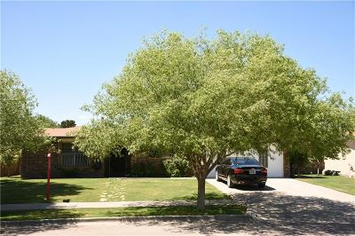 El Paso Single Family Home For Sale: 725 El Centauro Drive