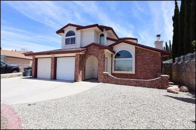Single Family Home For Sale: 1604 Cezanne Circle