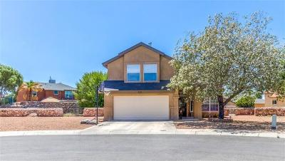El Paso Single Family Home For Sale: 838 Agave Park Court