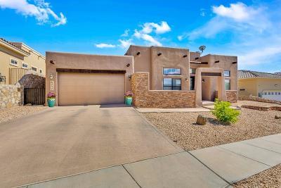 El Paso Single Family Home For Sale: 6252 Franklin Hawk Avenue