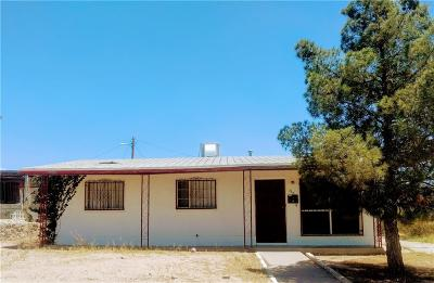 El Paso Single Family Home For Sale: 1130 Hunter Drive
