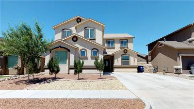Single Family Home For Sale: 11365 Bullseye Street