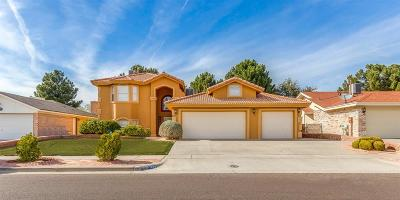 Vista Hills Single Family Home For Sale: 1869 Polly Harris Drive