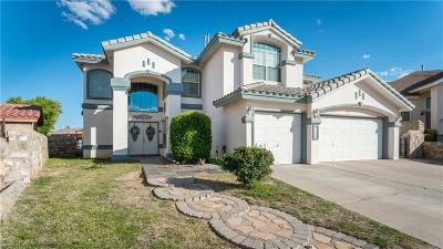 El Paso Single Family Home For Sale: 2054 Sun Port Way