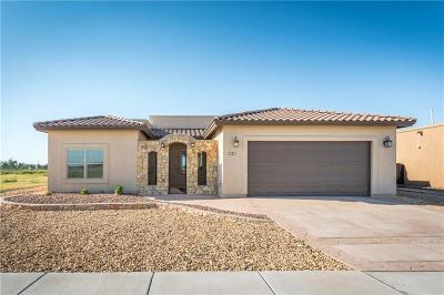 El Paso Single Family Home For Sale: 321 Rio Del Rancho Court