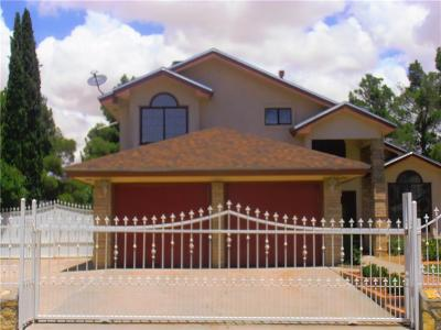 Vista Hills Single Family Home For Sale: 11509 Lake Tana Drive