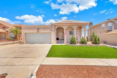 El Paso Single Family Home For Sale: 1452 Sara Danielle Place