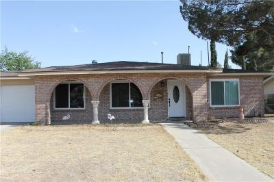 El Paso Single Family Home For Sale: 7010 Cerro Negro Drive