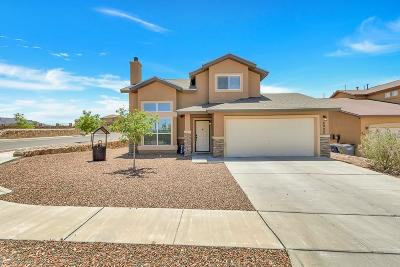 El Paso Single Family Home For Sale: 6900 Cactus Thrush
