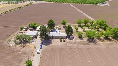 Single Family Home For Sale: 8259 Bosque Road