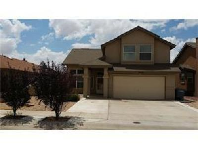 Single Family Home For Sale: 14200 Patriot Point Drive