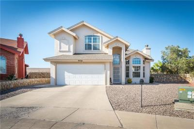 El Paso Single Family Home For Sale: 9560 Affection Court