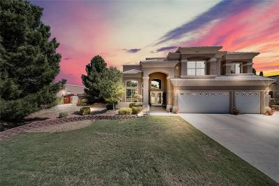 El Paso Single Family Home For Sale: 1015 Los Moros Drive