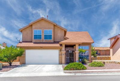 Horizon City Single Family Home For Sale: 565 Kearney Way