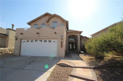 El Paso Single Family Home For Sale: 6441 Berringer Street