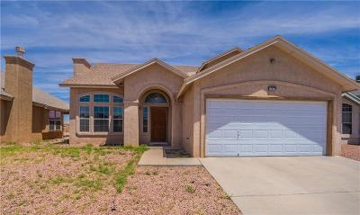 Single Family Home For Sale: 12377 Paseo Alegre Drive
