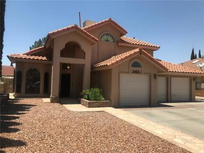 El Paso Single Family Home For Sale: 11559 James Grant Drive
