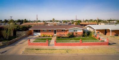 El Paso Single Family Home For Sale: 5215 Wally Drive