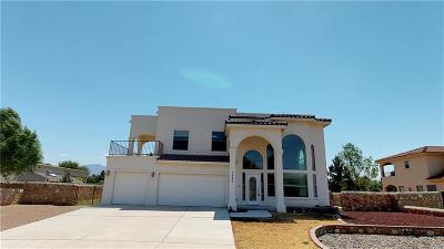 El Paso Single Family Home For Sale: 5840 Angel Street
