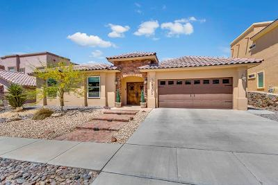 El Paso Single Family Home For Sale: 6365 Franklin Trail Drive
