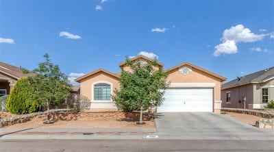 El Paso Single Family Home For Sale: 14324 Navajo Point Drive