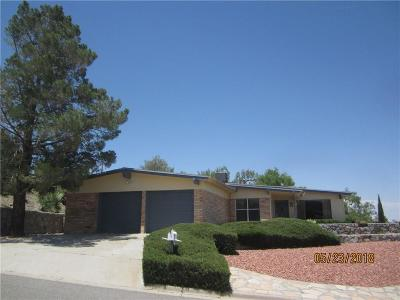 El Paso Single Family Home For Sale: 3021 Park North